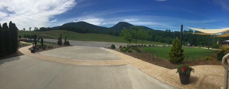 Yonah Mountain Vineyard